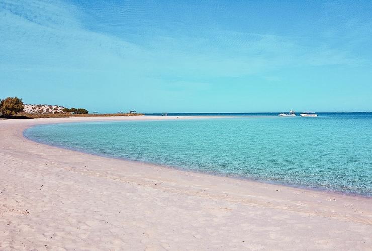 Coral Bay Crikey Camper Hire
